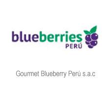 Gourmet Blueberry Perú s.a.c